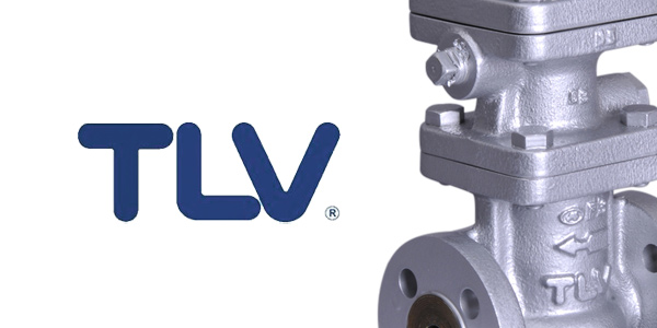 TLV and Valves Online